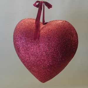 STO129 3D süda