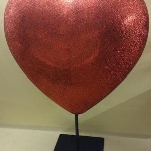 STO131 3D süda